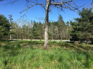 Photo 2: 1705 Antrim Road in Carrolls Corner: 35-Halifax County East Vacant Land for sale (Halifax-Dartmouth)  : MLS®# 202113716