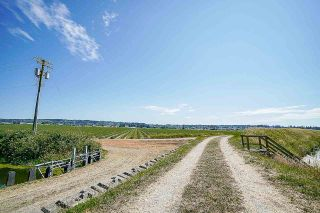 Photo 23: 16397 40 Avenue in Surrey: Serpentine Agri-Business for sale (Cloverdale)  : MLS®# C8038664