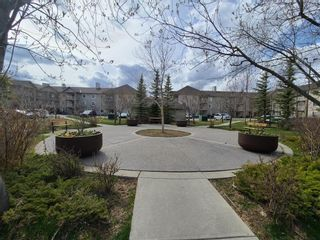 Photo 32: 109 2000 CITADEL MEADOW Point NW in Calgary: Citadel Apartment for sale : MLS®# A1136301