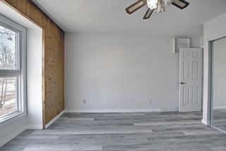 Photo 14: 6636 Temple Drive NE in Calgary: Temple Semi Detached for sale : MLS®# A1085203