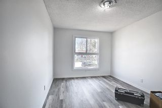 Photo 17: 6636 Temple Drive NE in Calgary: Temple Semi Detached for sale : MLS®# A1085203
