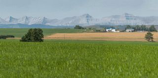 Photo 6: Meridian Street: Rural Foothills County Land for sale : MLS®# A1016966