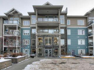 Photo 3: 427 10121 80 Avenue in Edmonton: Zone 17 Condo for sale : MLS®# E4227613