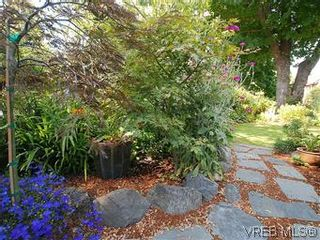 Photo 18: 1175 Hampshire Rd in VICTORIA: OB South Oak Bay House for sale (Oak Bay)  : MLS®# 584108