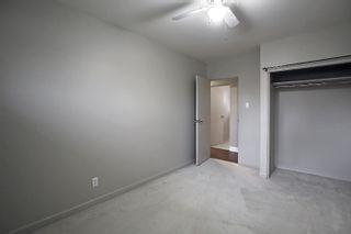 Photo 18: 8304 148 Street in Edmonton: Zone 10 House for sale : MLS®# E4265005