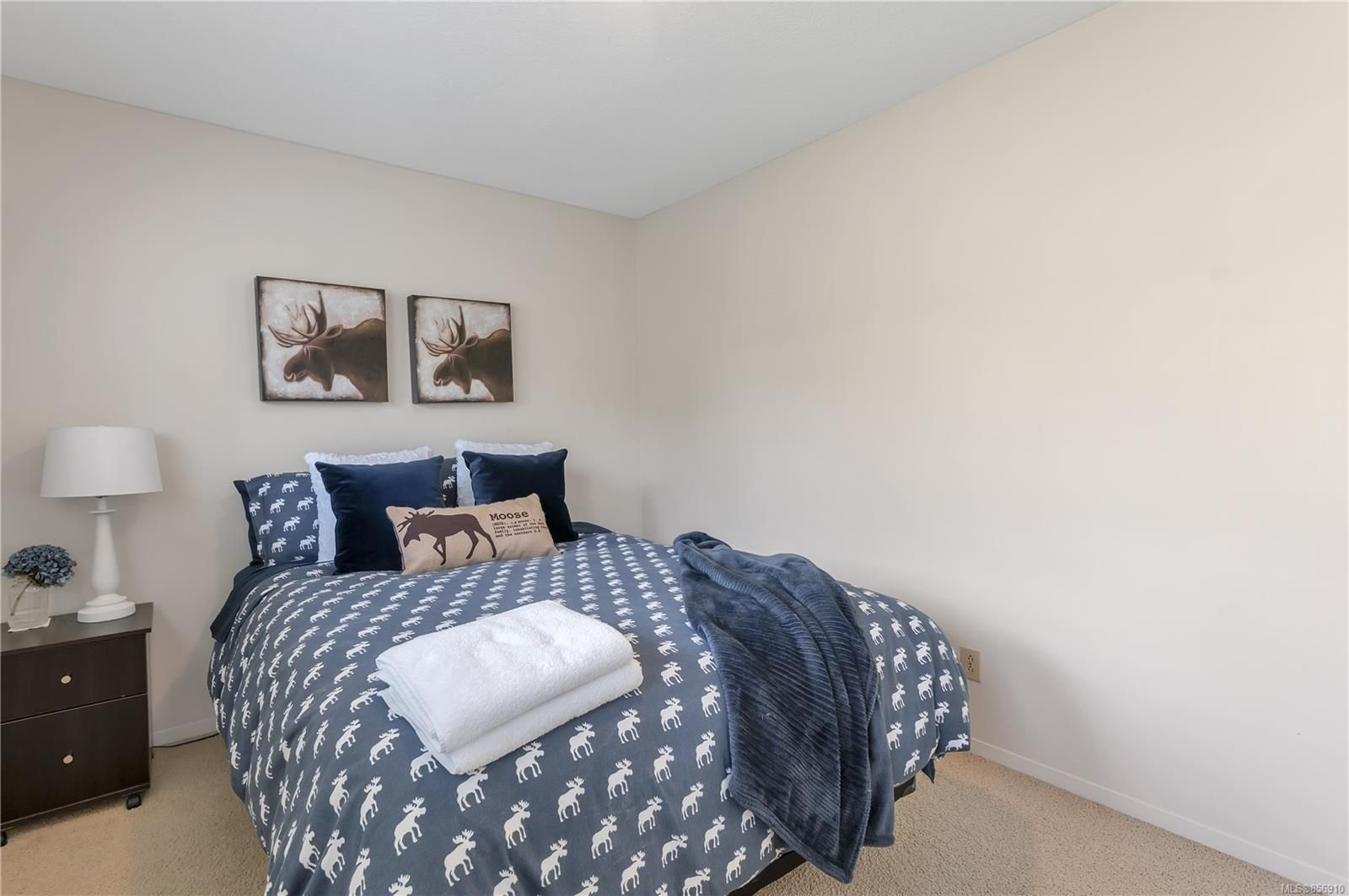 Photo 31: Photos: 215 S Alder St in : CR Campbell River Central House for sale (Campbell River)  : MLS®# 856910