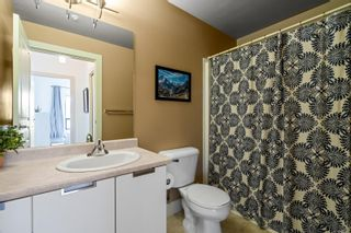 Photo 22: 519 870 Short St in : SE Quadra Condo for sale (Saanich East)  : MLS®# 857123