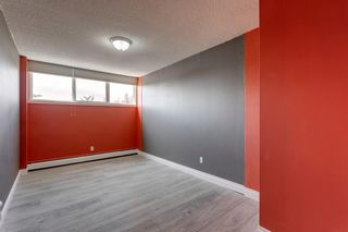 Photo 27: 211 7007 4A Street SW in Calgary: Kingsland Apartment for sale : MLS®# A1086391