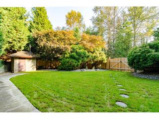 """Photo 33: 3852 196 Street in Langley: Brookswood Langley House for sale in """"Brookswood"""" : MLS®# R2506766"""