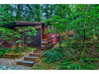 Photo 3: 11658 272 Street in Maple Ridge: Whonnock House for sale : MLS®# R2560673