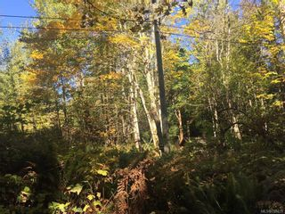 Photo 6: 1835 Radway Rd in UCLUELET: ML Shawnigan Land for sale (Malahat & Area)  : MLS®# 755429