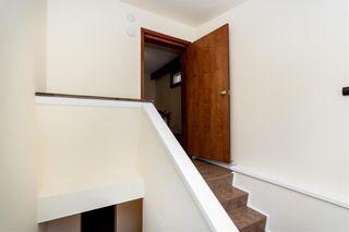Photo 29: 531 Craig Street in Winnipeg: Wolseley Residential for sale (5B)  : MLS®# 202017854