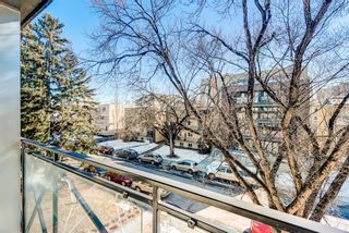 Photo 23: 404 120 24 Avenue SW in Calgary: Mission Apartment for sale : MLS®# A1079776