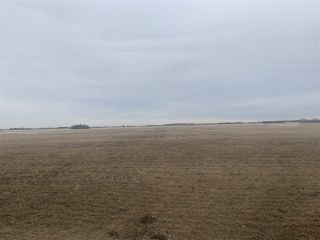 Photo 3: Rg. Rd. 252 Twp. 564: Rural Sturgeon County Rural Land/Vacant Lot for sale : MLS®# E4235323