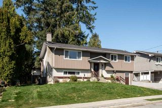 Photo 2: 3811 WELLINGTON Street in Port Coquitlam: Oxford Heights House for sale : MLS®# R2562811