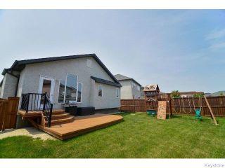 Photo 18: 53 Michaud Crescent in WINNIPEG: St Vital Residential for sale (South East Winnipeg)  : MLS®# 1519073