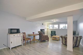 Photo 32: 155 Templevale Road NE in Calgary: Temple Detached for sale : MLS®# A1119165