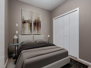 Photo 16: 1611 4641 128 Avenue NE in Calgary: Skyview Ranch Apartment for sale : MLS®# A1029088