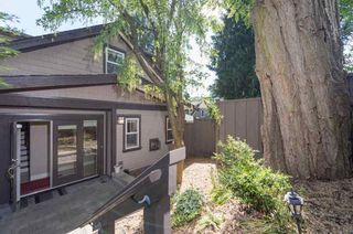 Photo 16: 5705 ALMA STREET in Vancouver West: Southlands Home for sale ()  : MLS®# R2088014