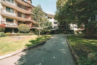 """Photo 1: 313 10160 RYAN Road in Richmond: South Arm Condo for sale in """"Stornoway"""" : MLS®# R2616782"""