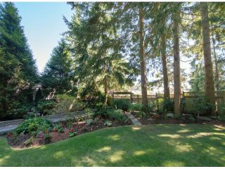 Photo 2: 13885 18TH Avenue in Surrey: Sunnyside Park Surrey House for sale (South Surrey White Rock)  : MLS®# F1431118
