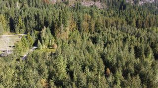 Photo 20: 2504 Cambie - Solsqua Road, in Sicamous: Vacant Land for sale : MLS®# 10241319