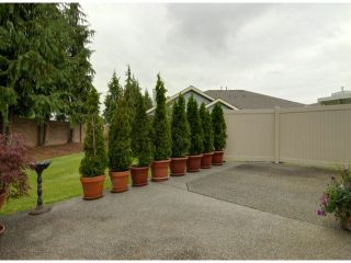 """Photo 14: # 80 5550 LANGLEY BYPASS RD in Langley: Langley City Townhouse for sale in """"Riverwynde"""" : MLS®# F1314556"""