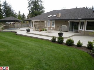 Photo 10: 2185 179TH Street in Surrey: Hazelmere Home for sale ()  : MLS®# F1001370