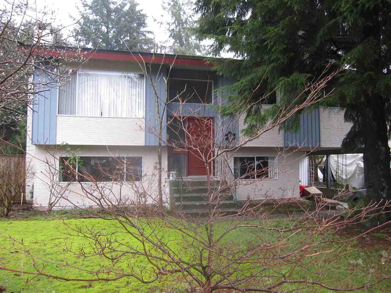 Main Photo: 11724 209 Street in Maple Ridge: Southwest Maple Ridge House for sale : MLS®# R2434650