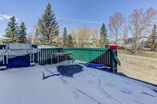 Photo 25: 247 Covington Close NE in Calgary: Coventry Hills Detached for sale : MLS®# A1097216