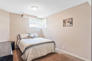 Photo 24: 9 Cranston Drive SE in Calgary: Cranston Detached for sale : MLS®# A1103449