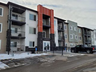 Photo 21: 216 16 Sage Hill Terrace NW in Calgary: Sage Hill Apartment for sale : MLS®# A1075737