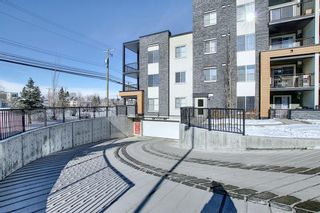 Photo 5: 1214 1317 27 Street SE in Calgary: Albert Park/Radisson Heights Apartment for sale : MLS®# A1070398