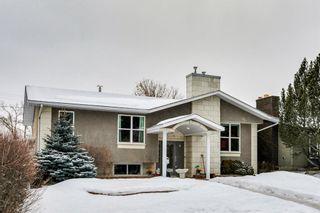 Photo 45: 275 Parkland Crescent SE in Calgary: Parkland Detached for sale : MLS®# A1064121