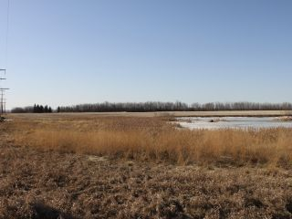 Photo 5: RGE RD 175 TWP RD 500: Rural Beaver County Rural Land/Vacant Lot for sale : MLS®# E4233179