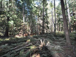Photo 6: 1239/1241 VANCOUVER BLVD in Savary Island: Vacant Land for sale : MLS®# 16136
