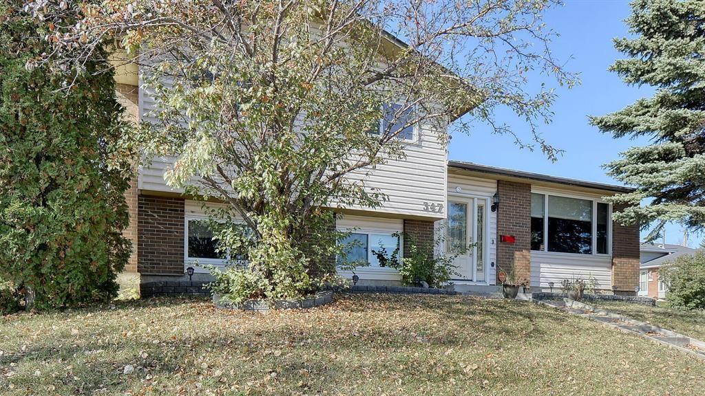 Main Photo: 347 Whiteside Road NE in Calgary: Whitehorn Detached for sale : MLS®# A1153718