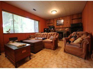Photo 10: 10540 SUNCREST Drive in Delta: Nordel House for sale (N. Delta)  : MLS®# F1414167
