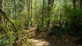Photo 16: LT4 Eagles Dr in : CV Courtenay North Land for sale (Comox Valley)  : MLS®# 876994