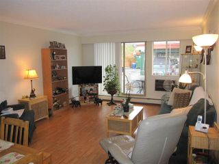 """Photo 2: 114 12096 222 Street in Maple Ridge: West Central Condo for sale in """"CANUCK PLAZA"""" : MLS®# R2119789"""