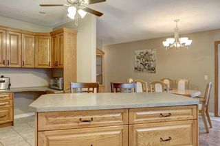 Photo 9: 167 Deerpath Court SE in Calgary: Deer Ridge Detached for sale : MLS®# A1139635