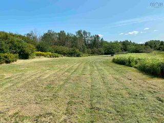 Photo 6: Shore Road in Merigomish: 108-Rural Pictou County Vacant Land for sale (Northern Region)  : MLS®# 202120405