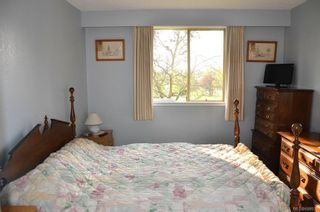Photo 9: 127 1025 Inverness Rd in Saanich: SE Quadra Condo for sale (Saanich East)  : MLS®# 698930