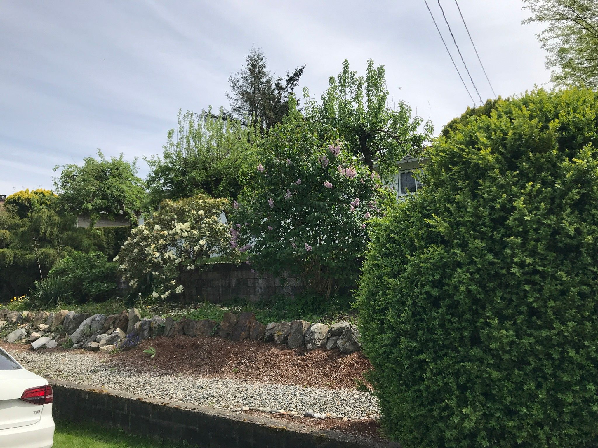 Photo 21: Photos: 2828 Arlington St. in Abbotsford: Central Abbotsford House for rent