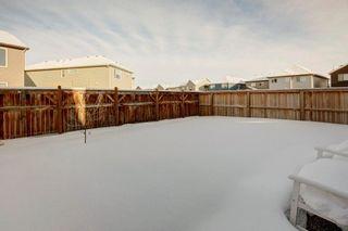 Photo 29: 20 AUBURN MEADOWS Crescent SE in Calgary: Auburn Bay Detached for sale : MLS®# C4281826