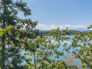 Photo 62: 1441 Madrona Dr in : PQ Nanoose House for sale (Parksville/Qualicum)  : MLS®# 856503