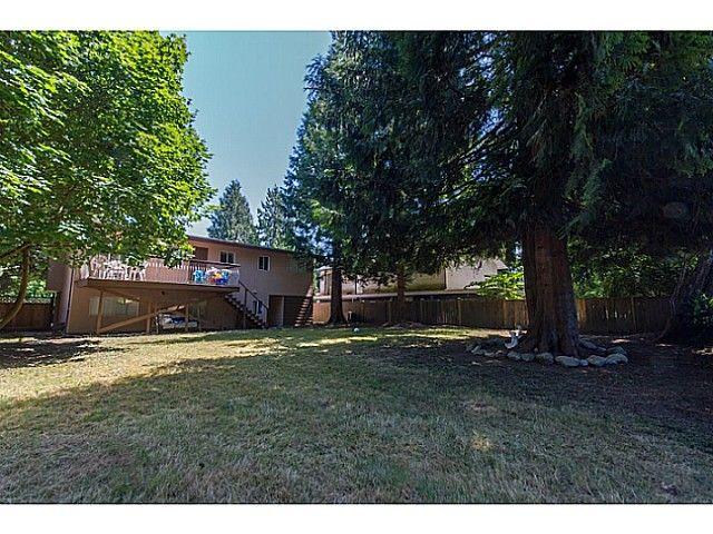 Photo 15: Photos: 11675 GRAVES ST in Maple Ridge: Southwest Maple Ridge House for sale : MLS®# V1130864