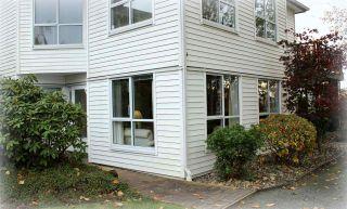"""Photo 4: 108 4955 RIVER Road in Delta: Neilsen Grove Condo for sale in """"SHORE WALK"""" (Ladner)  : MLS®# R2118758"""