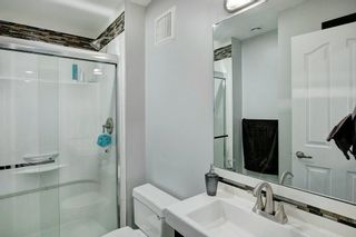 Photo 27: 21 CITADEL CREST Place NW in Calgary: Citadel Detached for sale : MLS®# C4197378