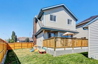 Photo 31: 101 Copperfield Gardens SE in Calgary: House for sale : MLS®# C4019487